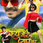 Pramod Premi Yadav – Guru Dubey Starrer Mega Budget Film Roop Mere Pyaar Ka First Look Launched